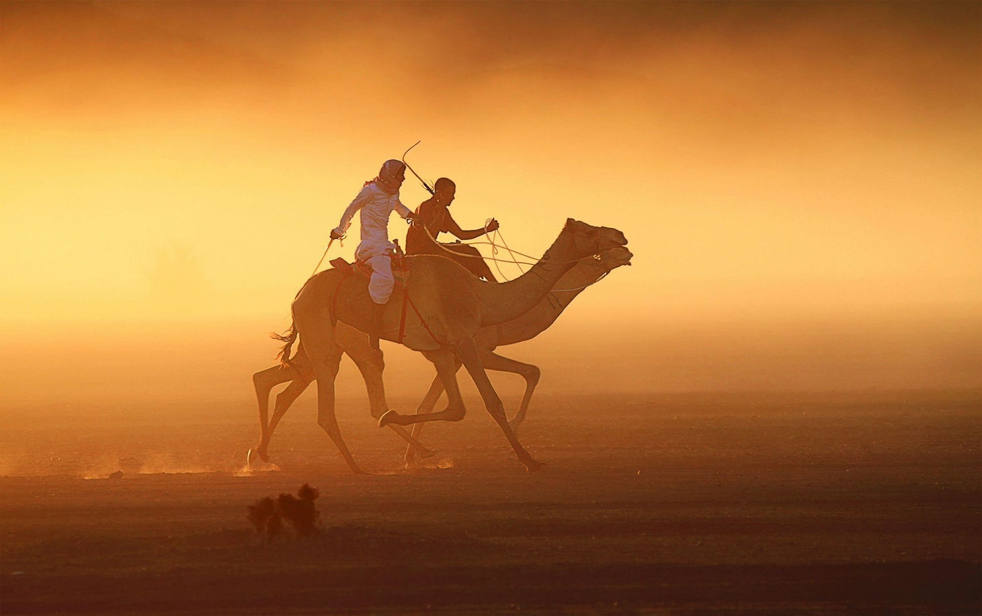 Photograph by Faisal Aljuhani, National Geographic Your Shot