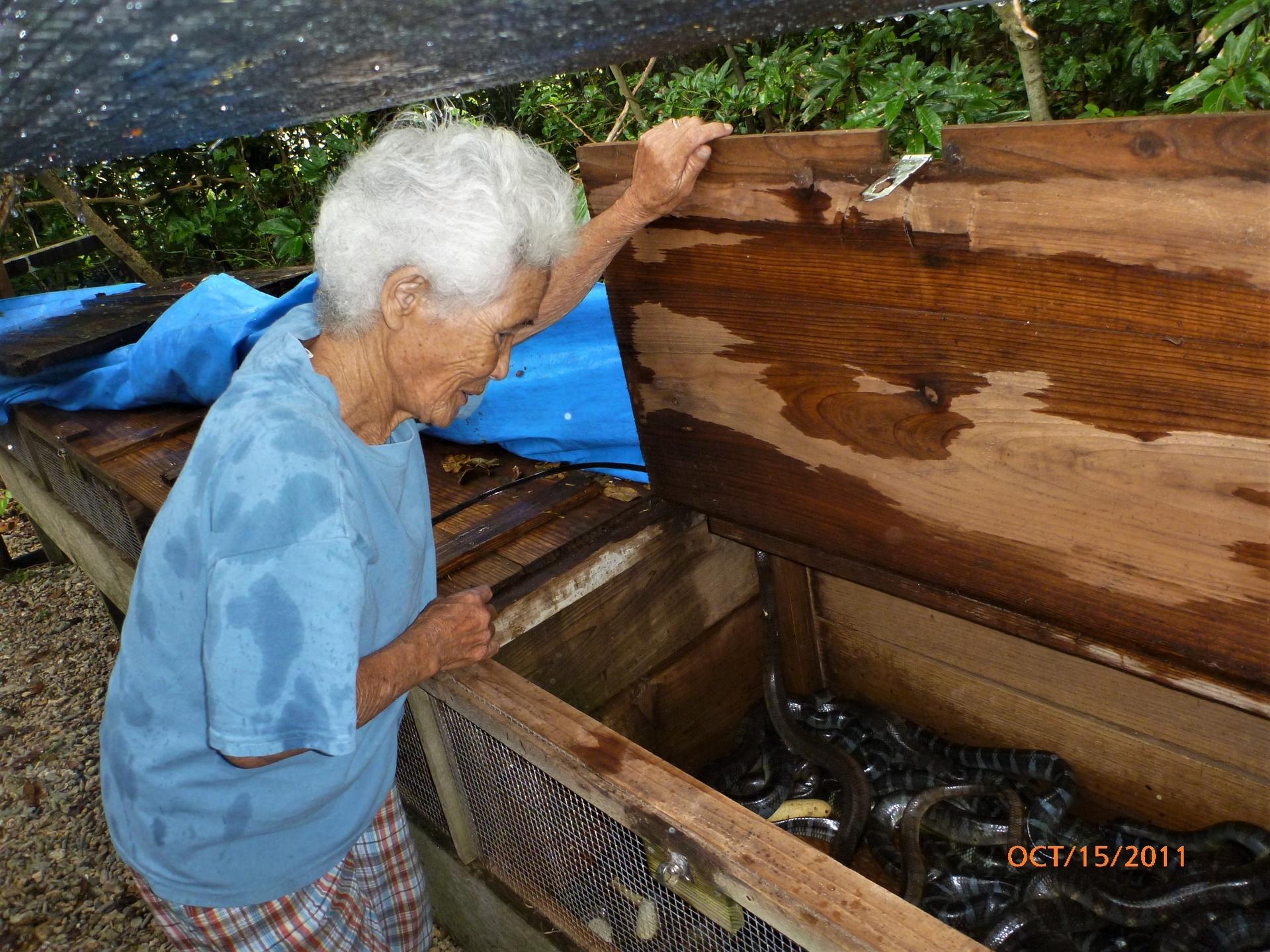 日本九高島長年捕捉海蛇的婦女。 攝影:杜銘章