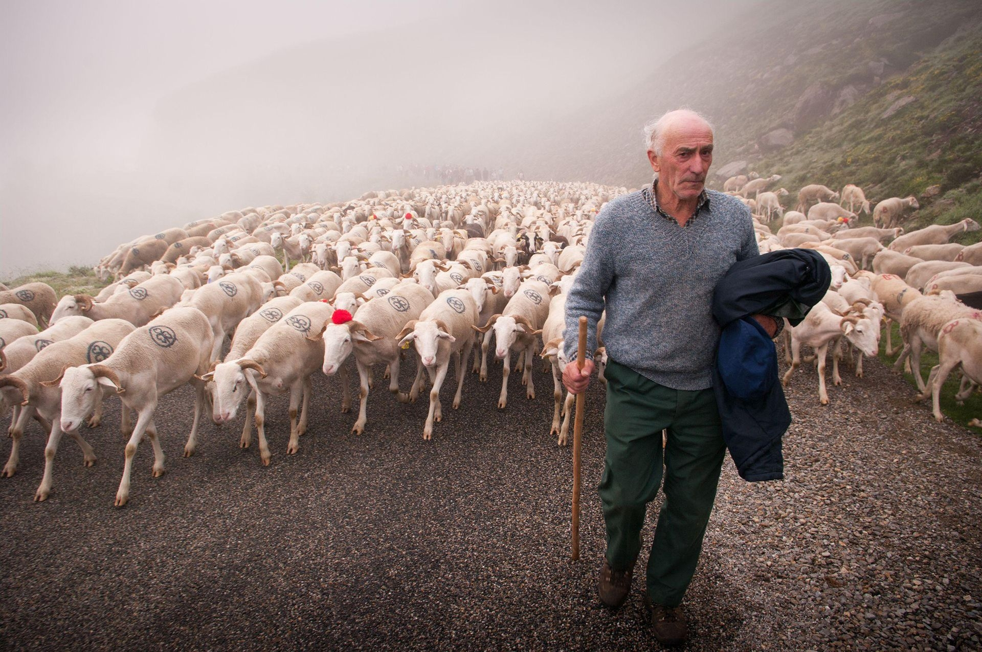 Photograph by Martin Castellan, National Geographic