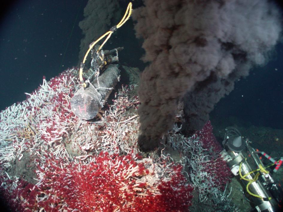 像圖中這樣的海底熱泉附近,可能會有被冰冷的水合物封住的液態CO2蘊藏庫存在。如果水合物外表融化了,碳可能會滲入海洋中,最後再進入大氣裡。PHOTOGRAPH COURTESY NOAA PMEL EOI PROGRAM
