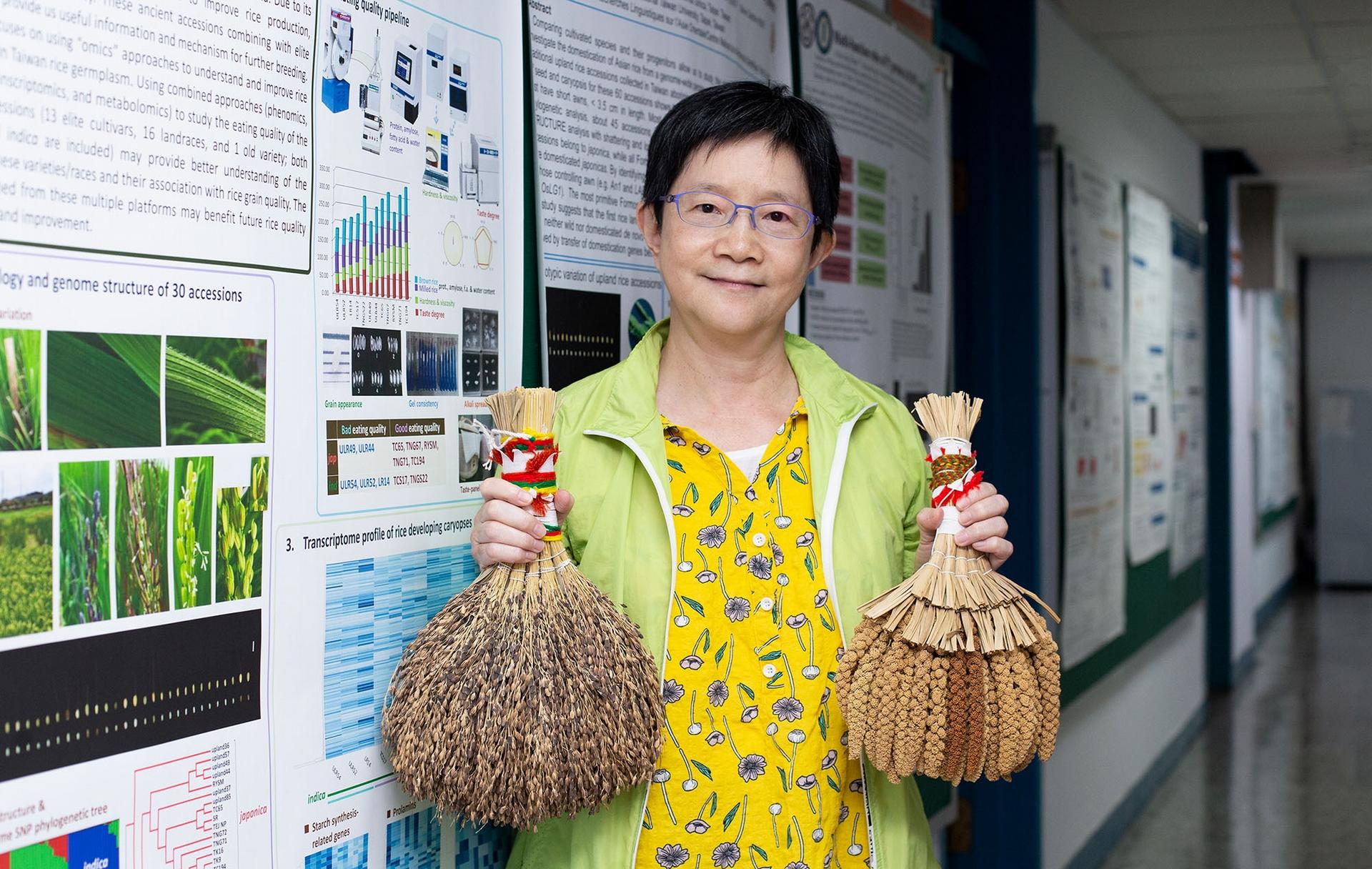 中研院植微所邢禹依特聘研究員專精水稻基因體研究,曾和周德源博士一起領導臺灣的團隊參與「國際水稻基因體定序計畫」,與世界各國合作,定出了水稻 12 條染色體的基因序列。近年來,她的實驗室研究山地陸稻,透過基因定序技術、親緣分析,解讀臺灣稻米與人的故事。 <br>攝影│林洵安