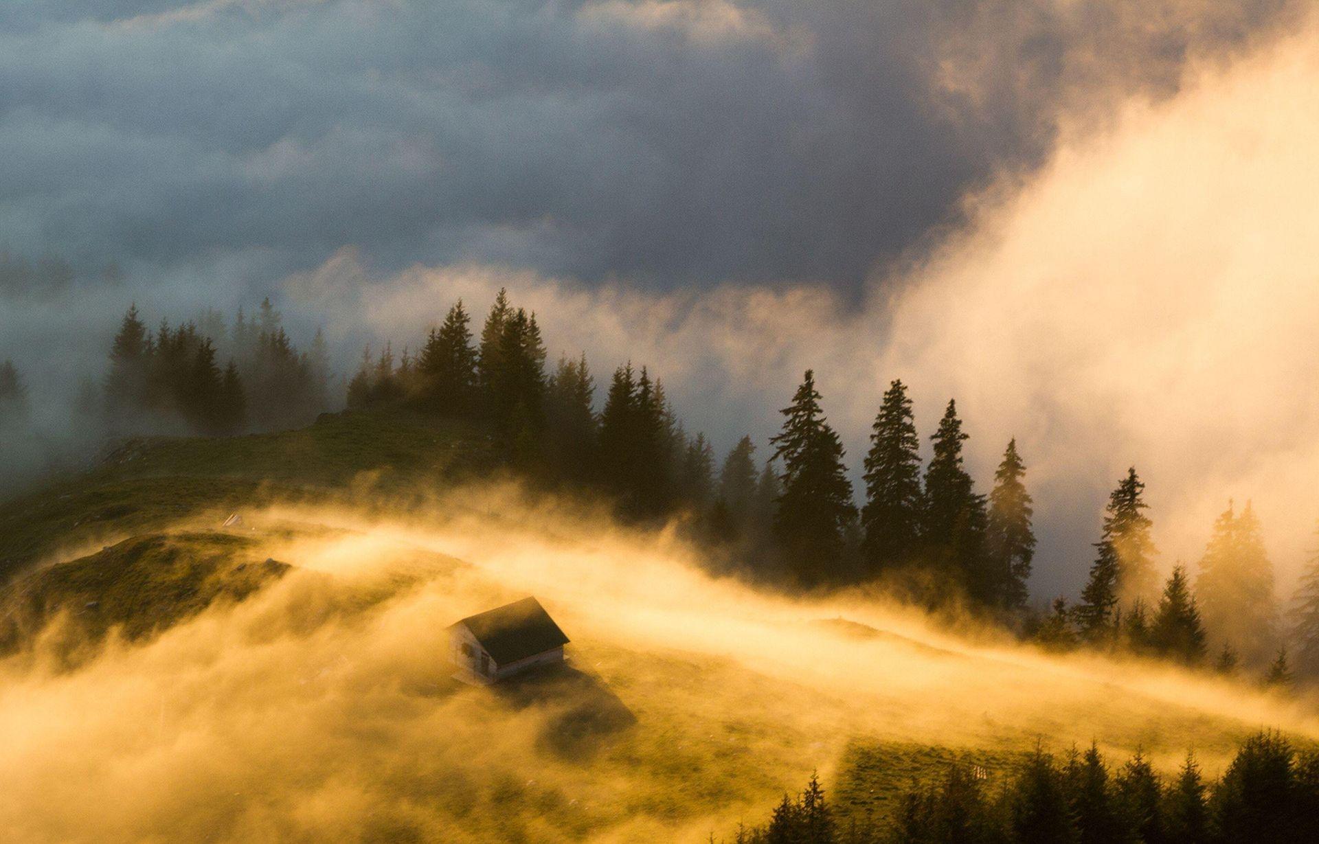 Photograph by  Lazar Ovidiu, National Geographic