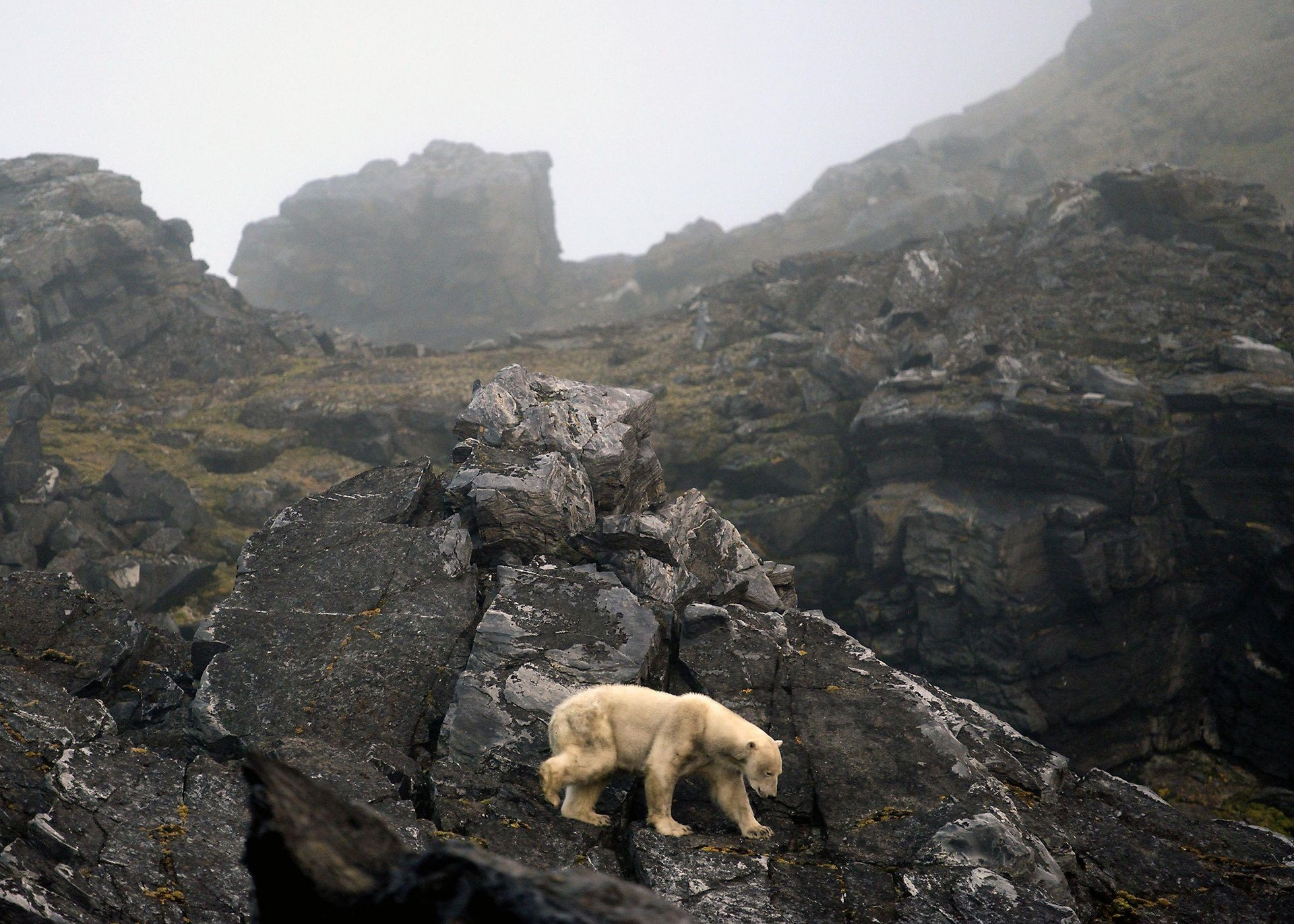 Photograph by Tor Amundsen, National Geographic