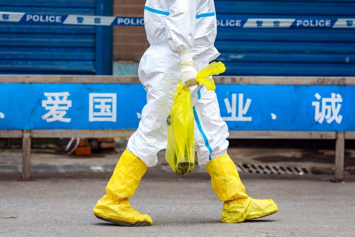 武漢的野生動物市場是冠狀病毒疫情於2019年12月開始的地方,該市場關閉之後,一名員工帶走一隻活蠑螈。PHOTOGRAPH BY FEATURE CHINA, BARCROFT MEDIA/GETTY