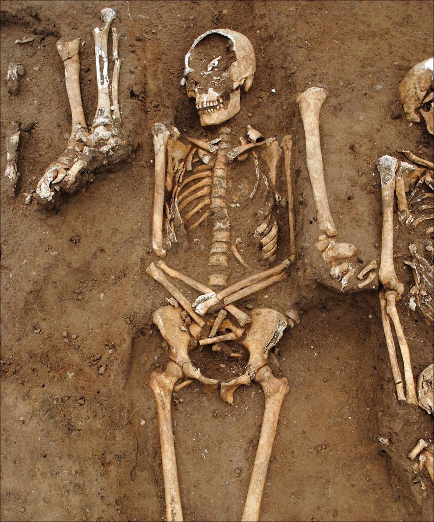 在公元348到349年鼠疫爆發期間,48名死者被埋葬在英格蘭桑頓修道院(Thornton Abbey)內的一座集體墳墓(細節如上圖)。 PHOTOGRAPH COURTESY UNIVERSITY OF SHEFFIELD, ANTIQUITY PUBLICATIONS LTD