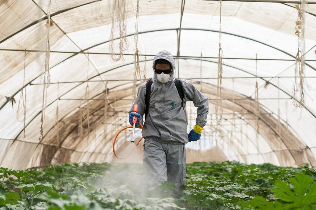 研究發現,劇毒性農藥賣進貧窮國家的比例高於富裕國家。照片來源:Thomas Cristofoletti for USAID(CC BY-NC 2.0)