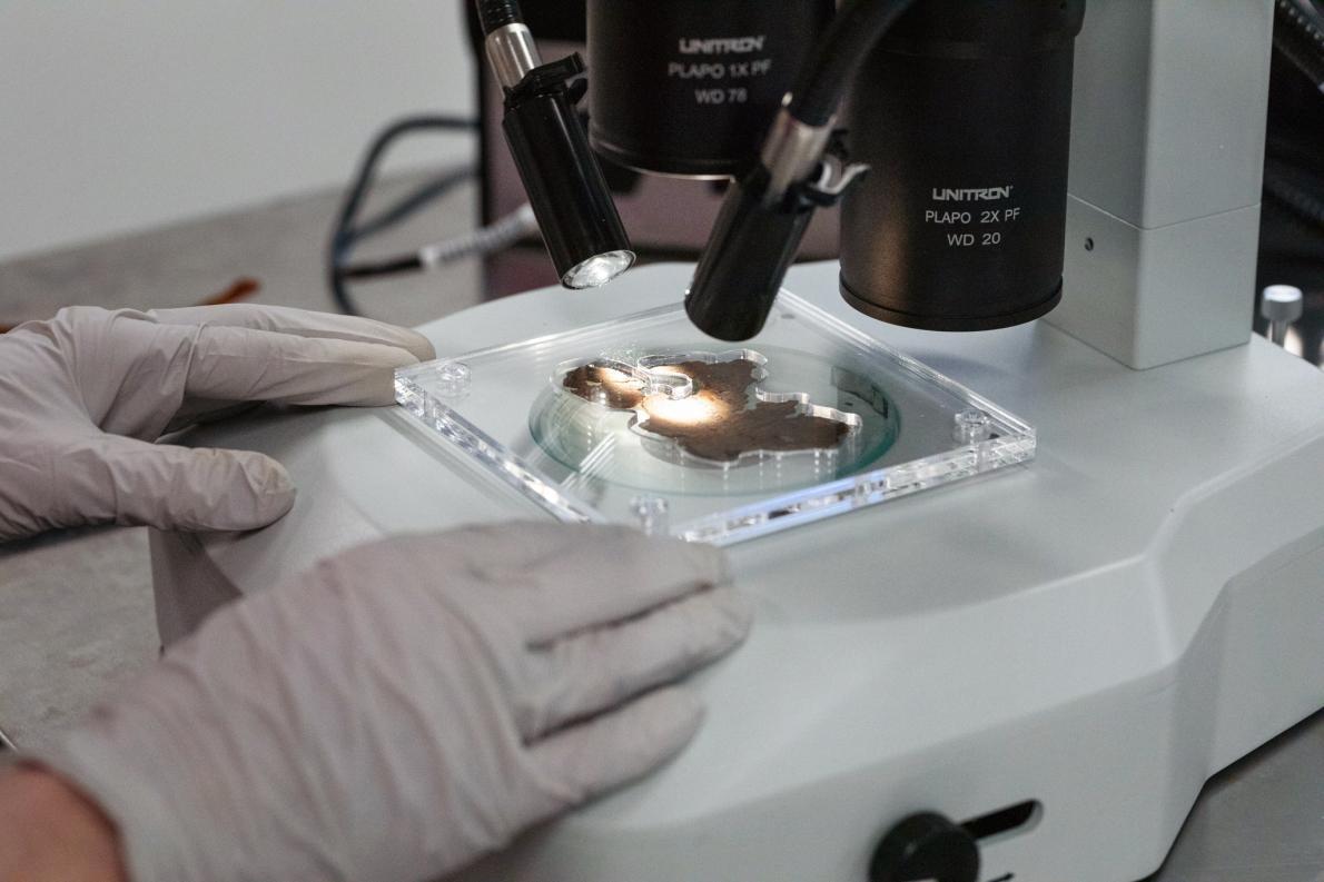 研究人員謹慎地在高倍率顯微鏡下檢視所有16片碎片的表面──同時也不能破壞脆弱、酥脆的碎片。PHOTOGRAPH BY REBECCA HALE, NGM STAFF