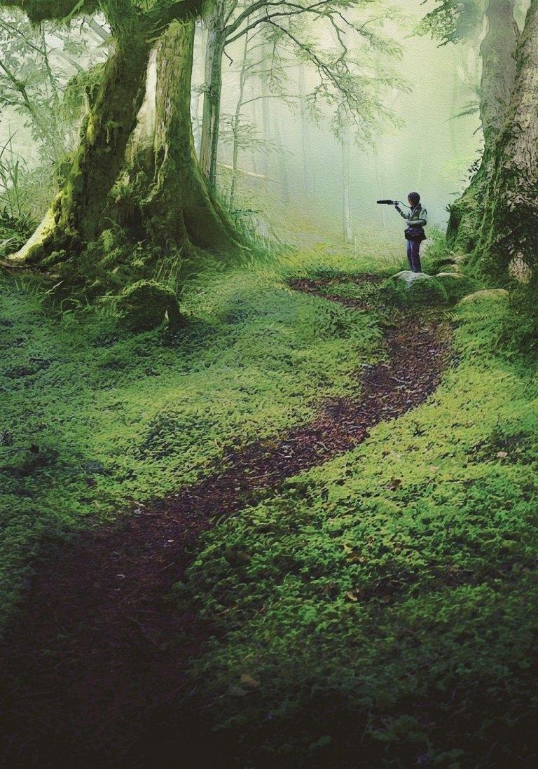 范欽慧推動的寂靜山徑,要大家安安靜靜上山,是對森林更好的方式。(圖片提供於 范欽慧《搶救寂靜》/ 遠流出版)