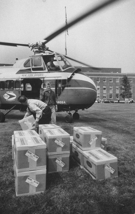 希爾曼研發的1957年流感疫苗用直升機趕著送往全美各地。 PHOTOGRAPH BY WALTER SANDERS, THE LIFE PICTURE COLLECTION/GETTY
