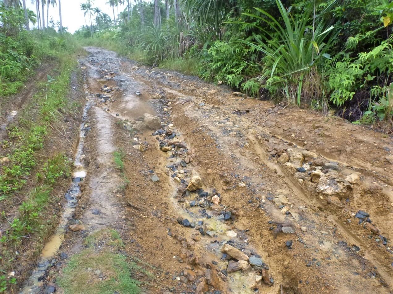 我一離開漁村我就後悔了。那個路況何止高低起伏,路面不但泥濘濕滑,還被侵蝕出許多深溝。攝影:杜銘章
