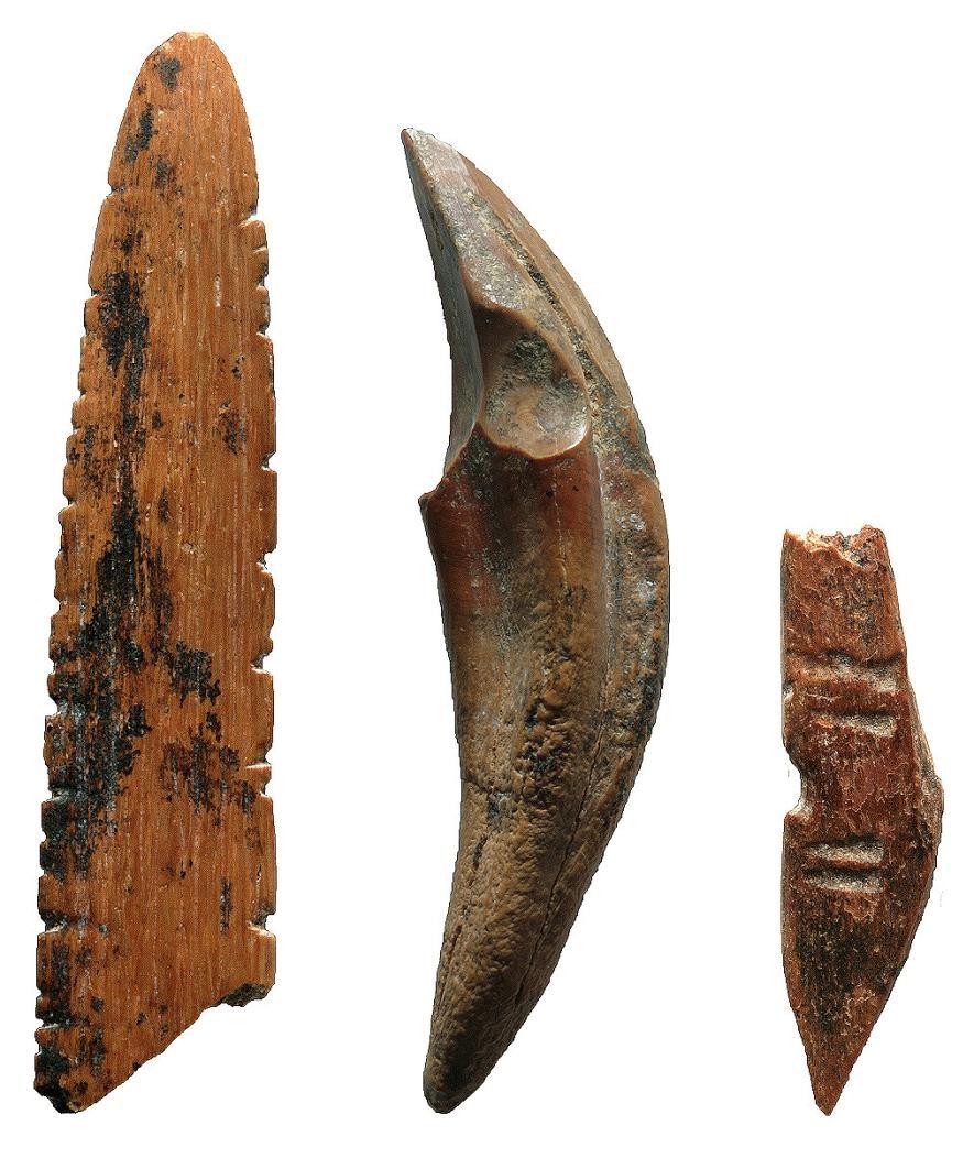 從斯里蘭卡法顯洞(Fa-Hien Lena)出土的工具由骨頭和牙齒製成,它們被用作狩獵小猴子與松鼠、切割獸皮或植物,也或許用來織網。照片中(由左至右)是可能用作織網的梭子、猴牙錐子/小刀與投擲武器。PHOTOGRAPH BY M. C. LANGLEY