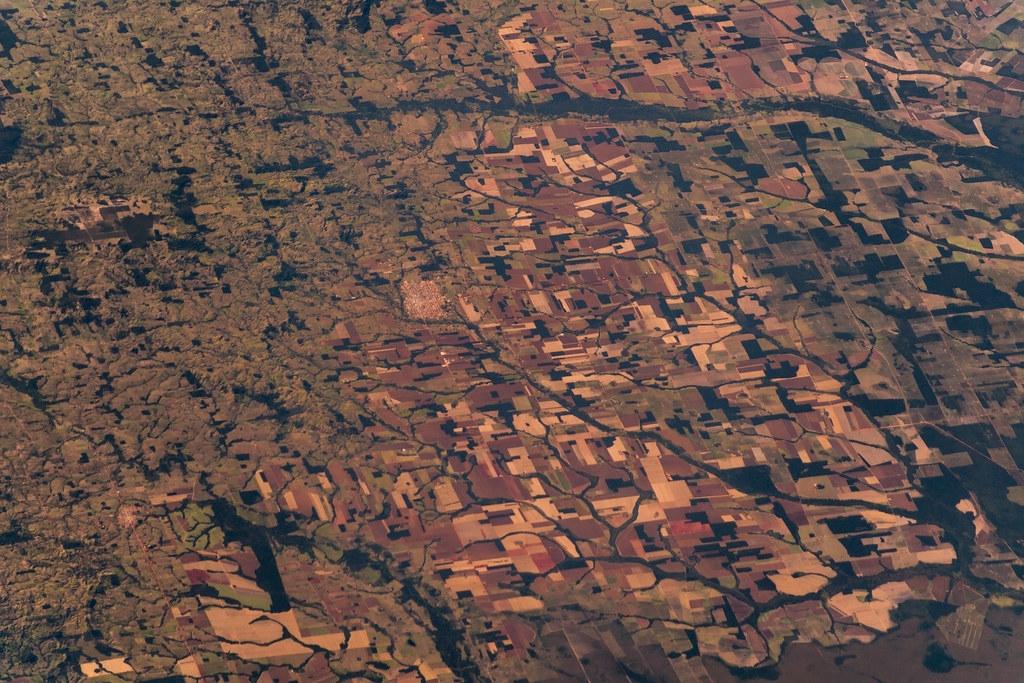 森林砍伐加劇人畜共通傳染病的散播。照片來源:Alexander Gerst(CC BY-SA 2.0)