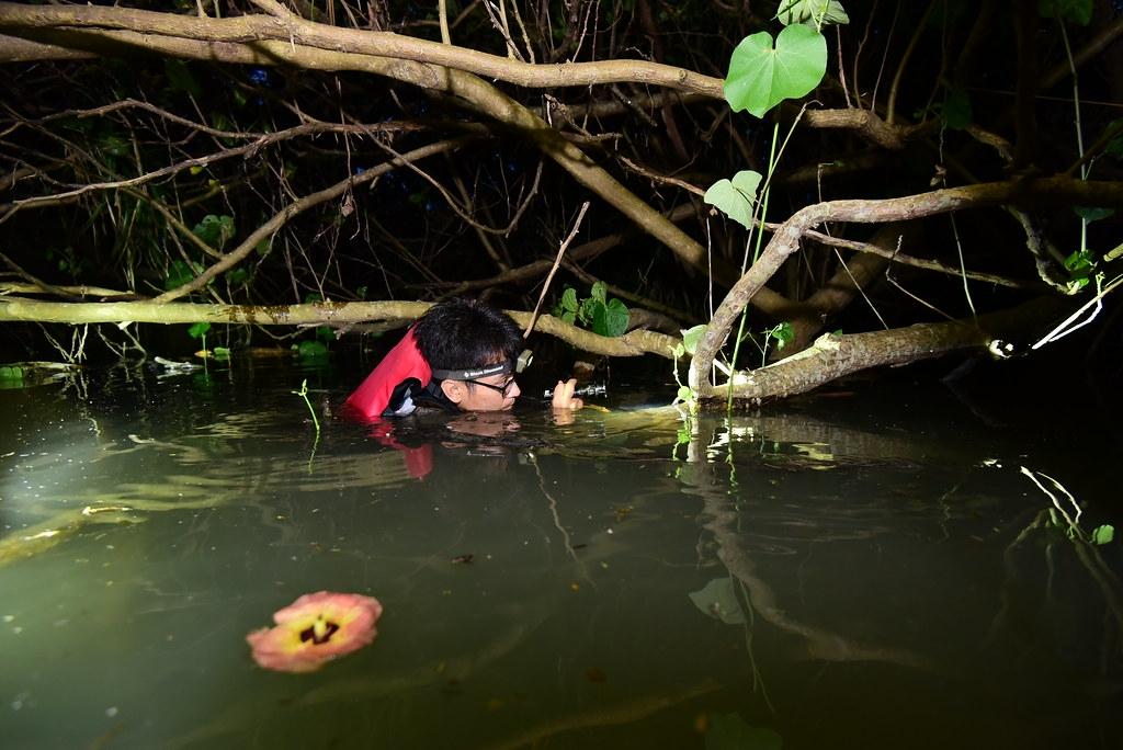 墾管處支持願意野外調查的研究生,以園區為科研基地進行基礎調查。圖為李政璋調查陸蟹棲地現場。圖片來源:李政璋提供