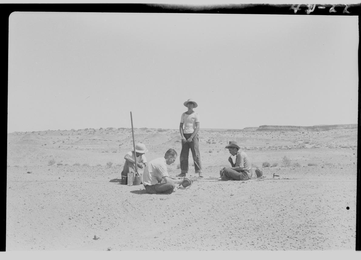 這張照片拍攝於1942年的發掘現場,當時加州大學柏克萊分校的科學家正在發掘一副雙脊龍化石。UNIVERSITY OF CALIFORNIA MUSEUM OF PALEONTOLOGY