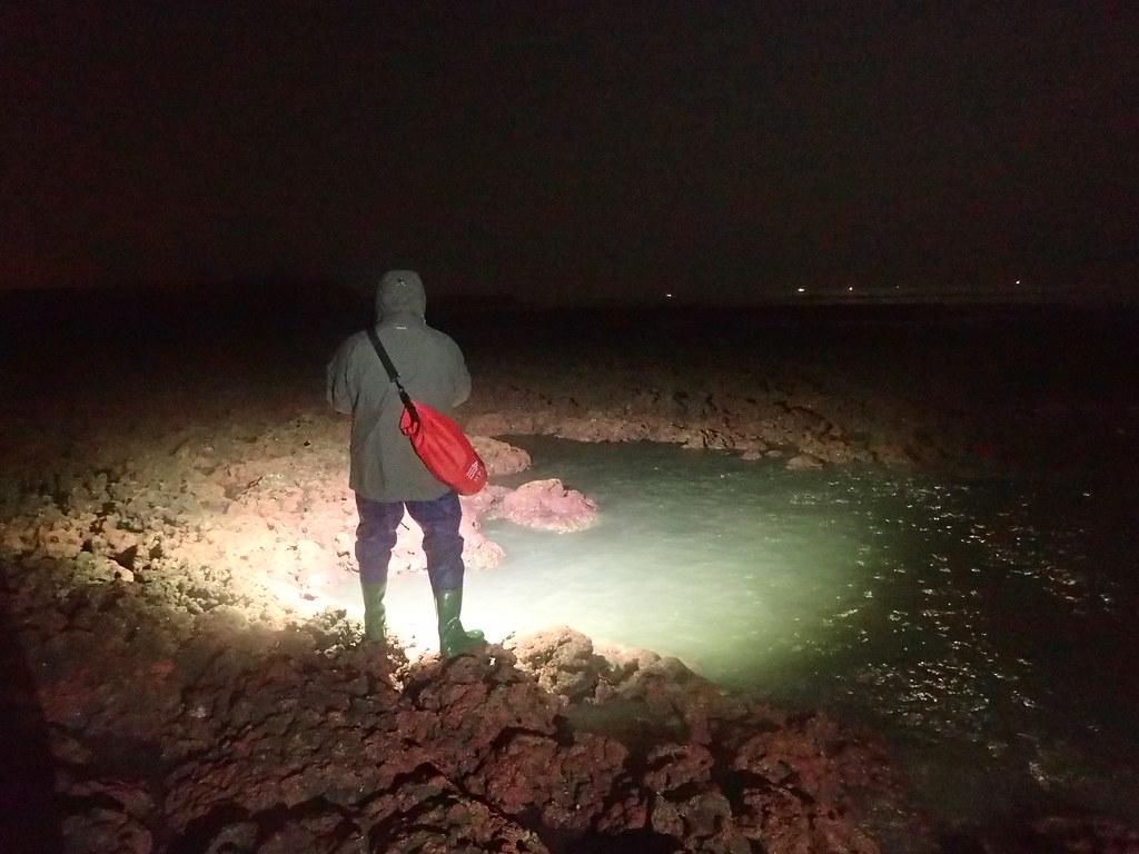 研究人員需掌握低潮時間走在礁盤上紀錄,若遇到半夜退潮研究人員一樣要進入調查,陳昭倫笑稱團隊是在做「夜間保全」的工作。圖片來源:陳昭倫團隊提供。