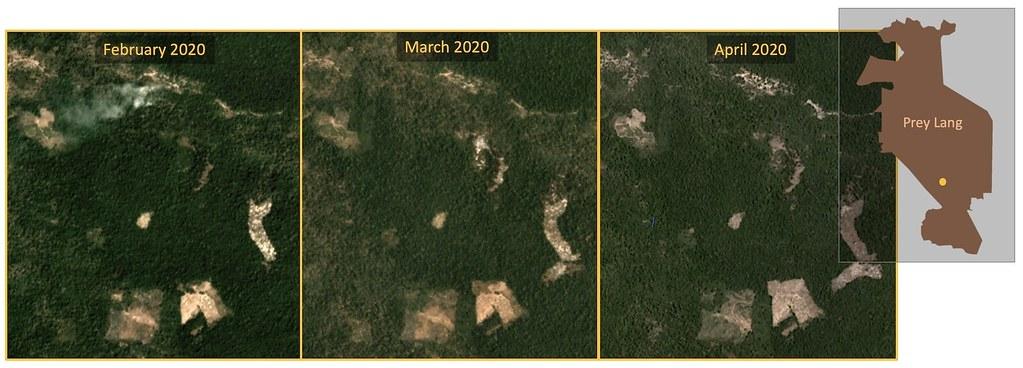"衛星影像顯示普雷朗南部地區也有森林砍伐活動。資料來源:Planet Labs, Inc. ""Monthly /Quarterly Mosaics."" Accessed through Global Forest Watch on May 11, 2020"