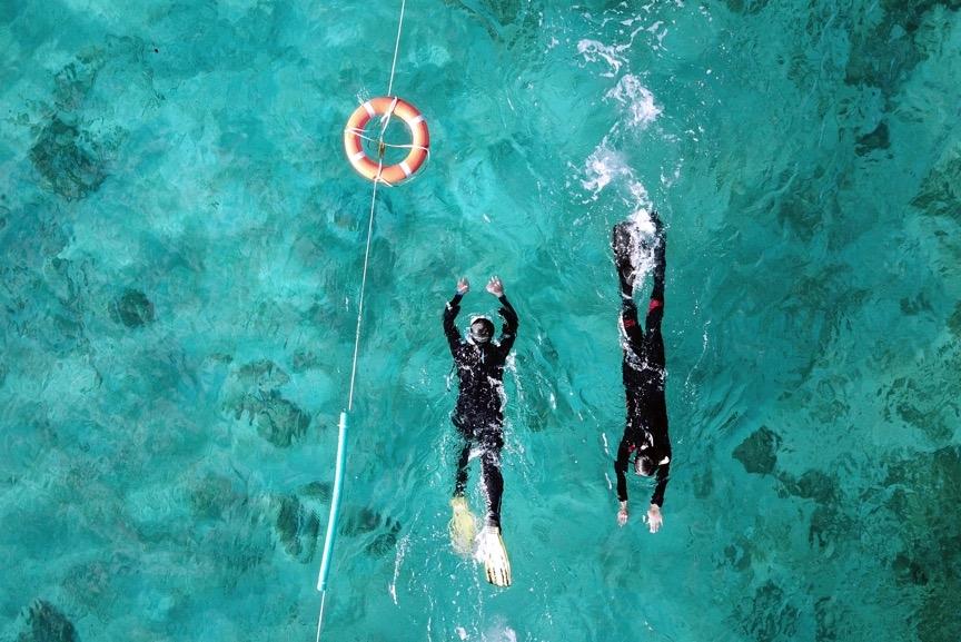 除了重裝訓練外,每天早上都有游泳與輕裝浮潛的練習,<br>務必讓學員快速地擁有足夠的體能與踢動蛙鞋的技巧。攝影:朱雲瑋