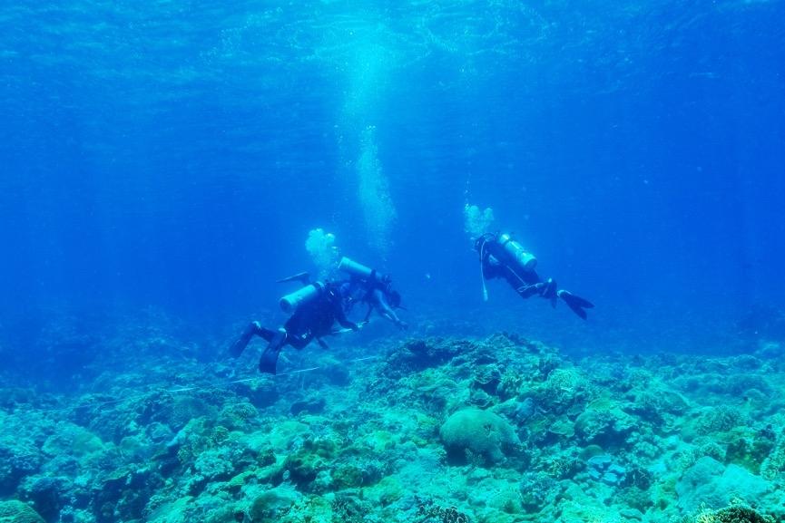 課程的重點是培養水下調查研究人員,因此安排了珊瑚礁體檢的實習。實習時除了該進行的調查外,<br>中性浮力也是考核的重點項目,為避免珊瑚有所損傷,調查中均需保持中性浮力,絕對不可以碰觸到珊瑚。攝影:朱雲瑋