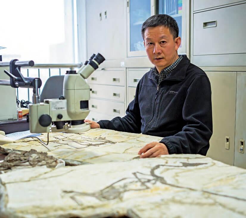 古生物研究 徐星。攝影: 肖詩白、劉淇