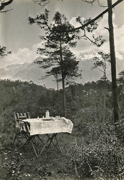野餐的好天氣:戶外用餐百年