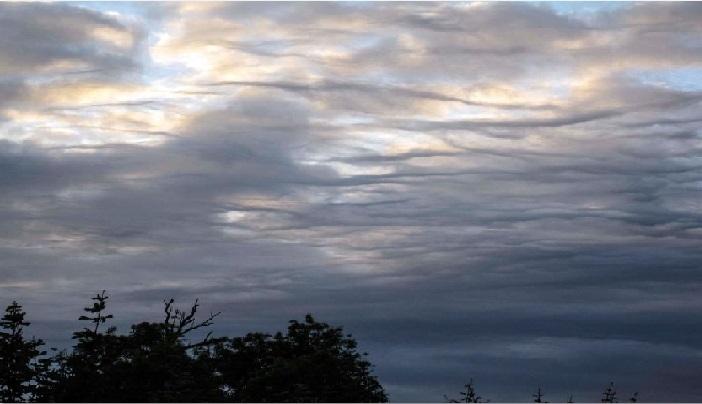 30年來首見──11種新命名的雲