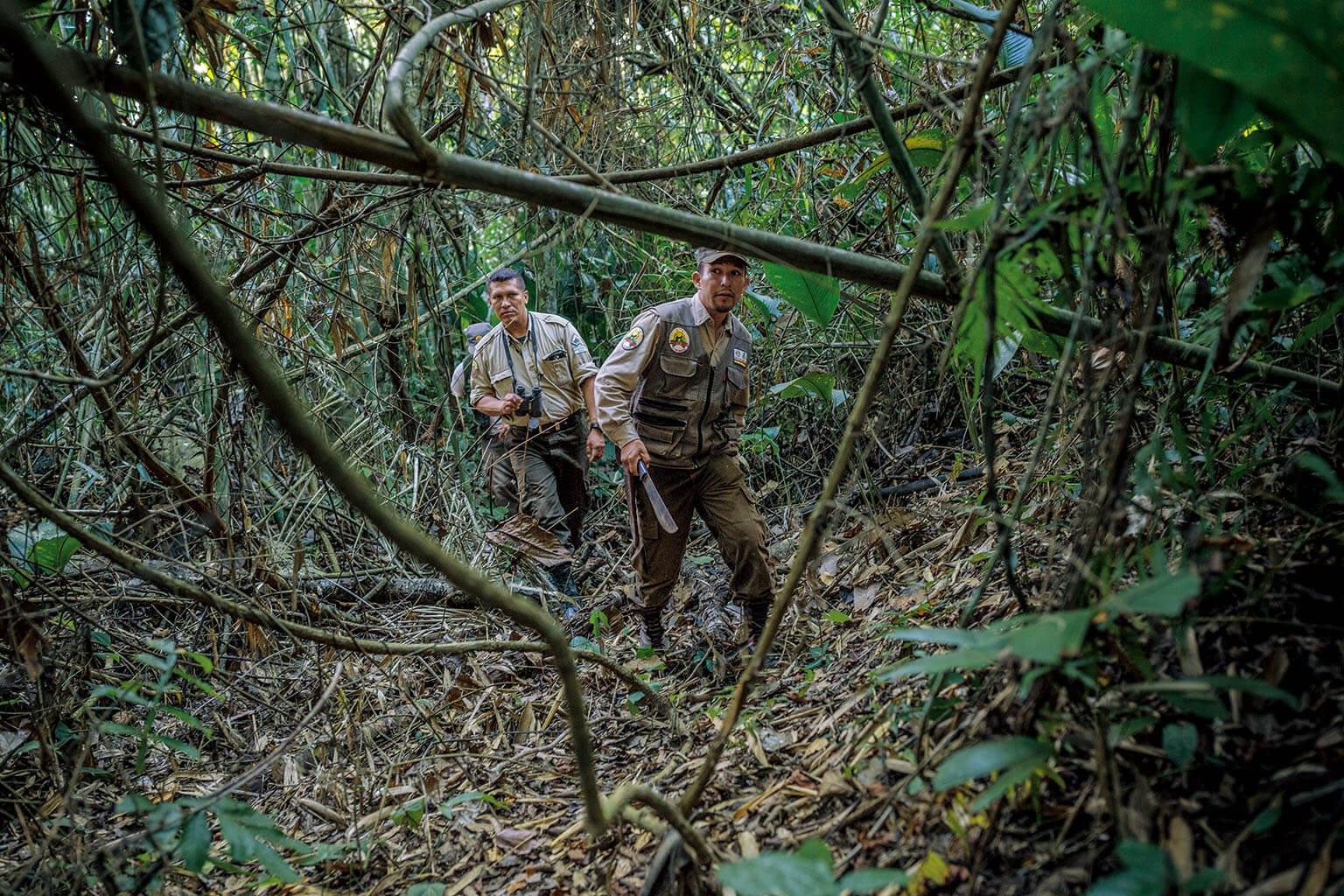 玻利維亞的馬迪迪國家公園是數百隻美洲豹的家園。國家公園處長馬可斯.烏茲奎亞諾(左)和他的管理員發現,中國買家對於收購美洲豹牙齒的興趣愈來愈高,因為這些牙齒可以賣到他們國家的黑市去。  攝影:克里斯欽.羅德里奎茲 CHRISTIAN RODRIGUEZ