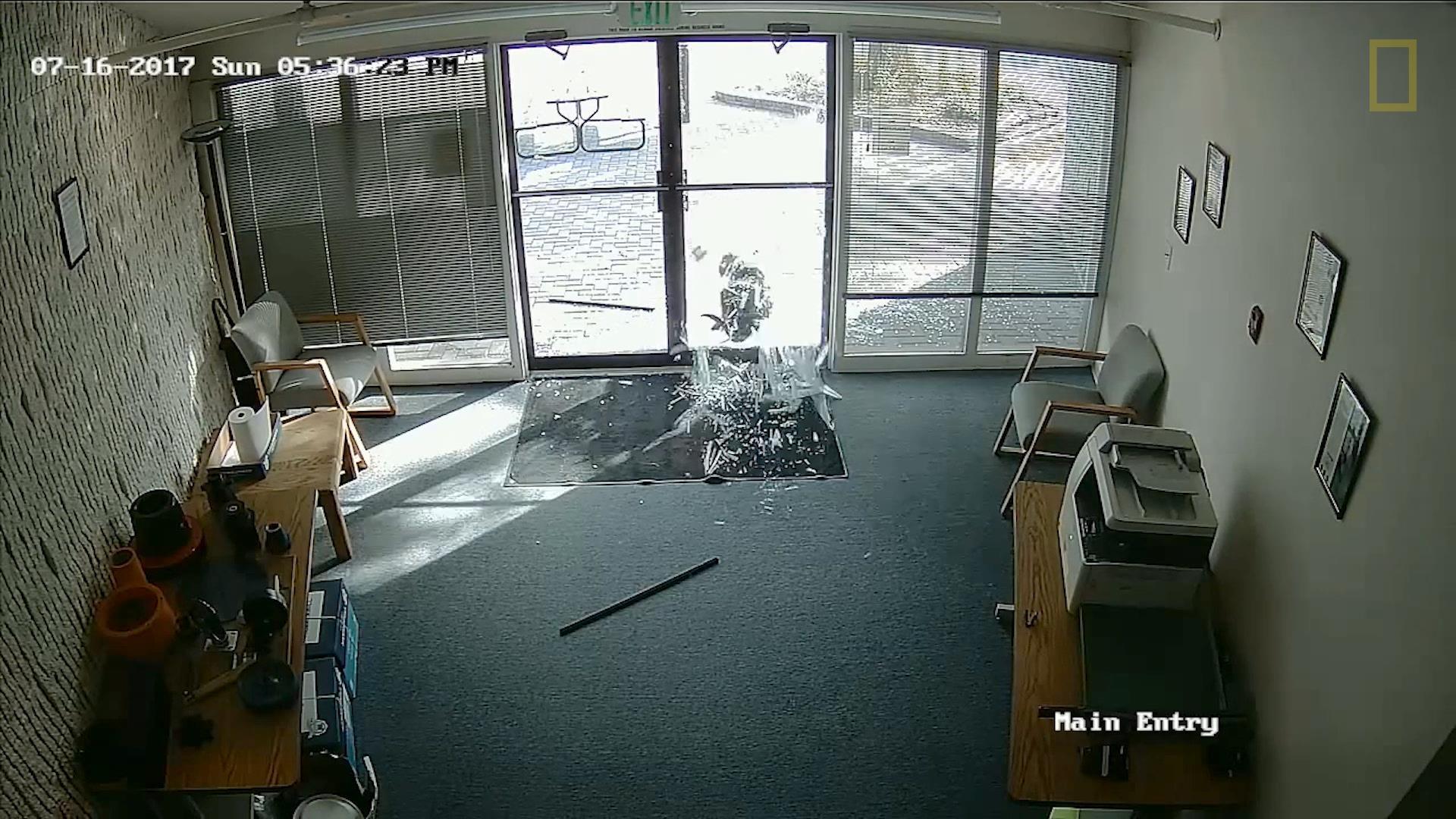 為什麼山羊撞爛了一個辦公室
