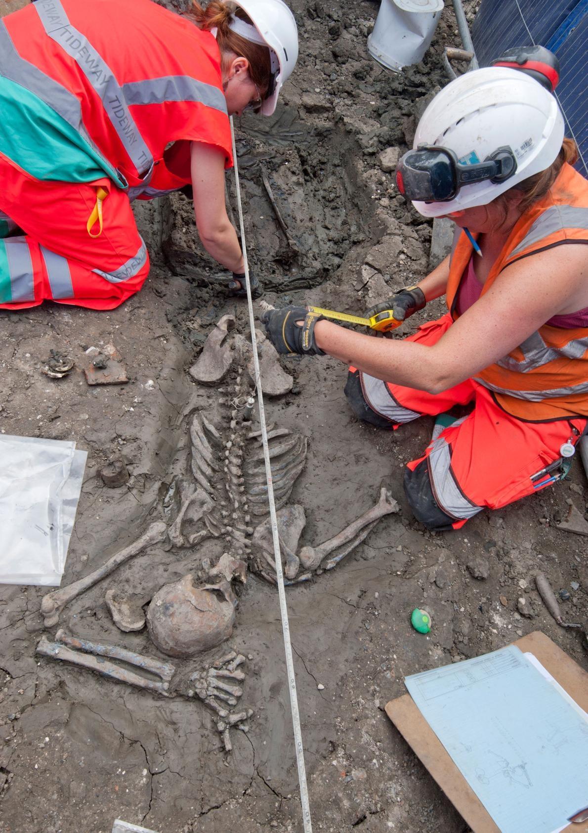 倫敦的考古學家正在研究一名三十多歲的成年男性骨骸,他已經在地下靜靜躺了超過500年。 COURTESY OF MOLA HEADLAND INFRASTRUCTURE