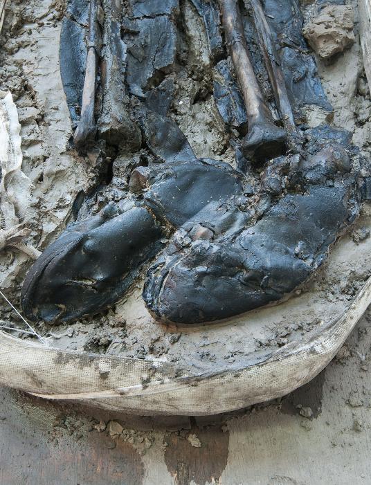 專家為該男子的皮靴定年,結果落在15世紀晚期或16世紀早期。 COURTESY OF MOLA HEADLAND INFRASTRUCTURE