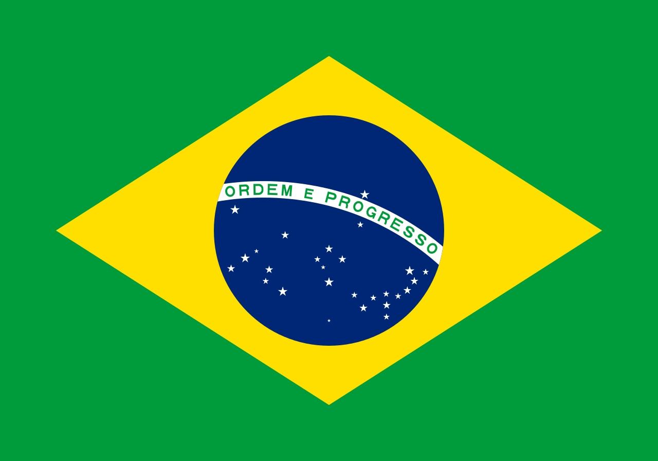 巴西國旗描繪里約星空