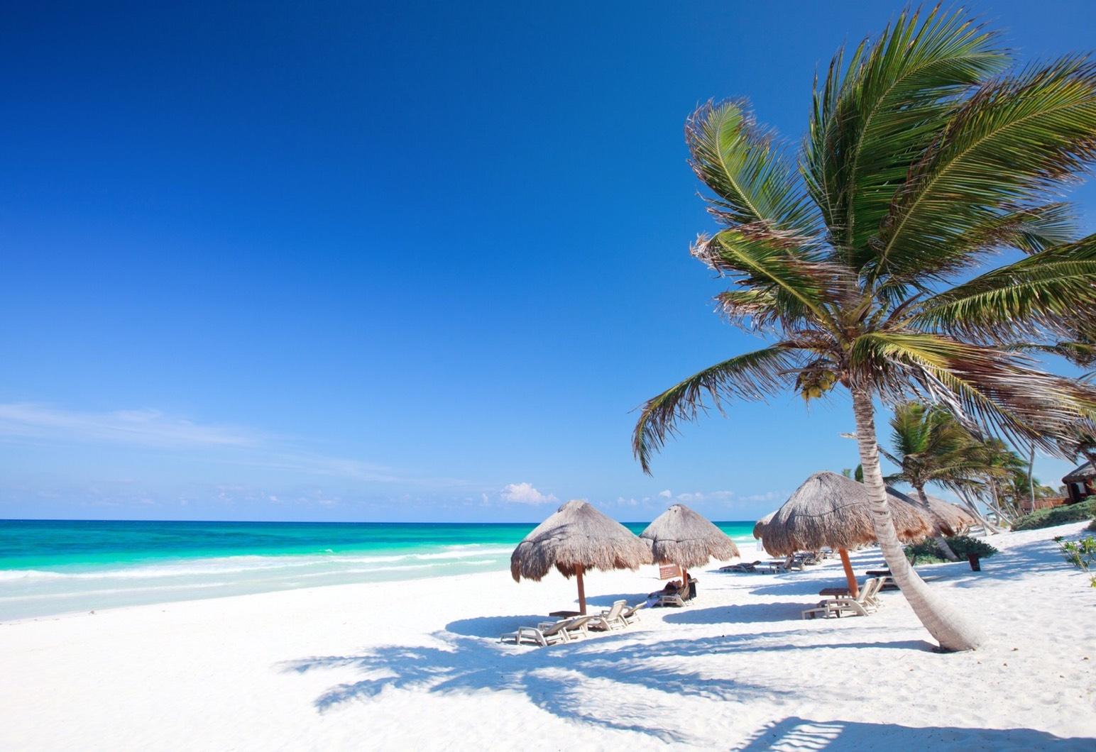 航向加勒比海的熱情奔放 (Sponsored)