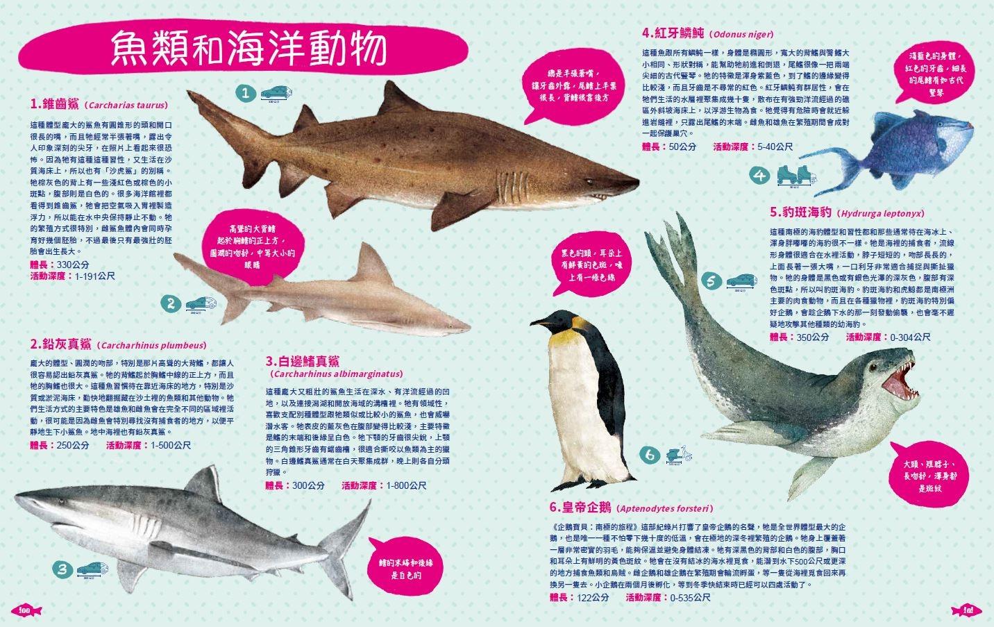 《世界上有哪些魚? 》 太平洋的魚類與海洋生物