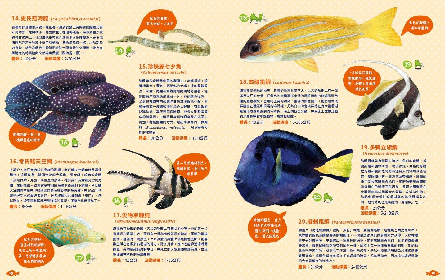 《世界上有哪些魚? 》 印度─ 太平洋海域