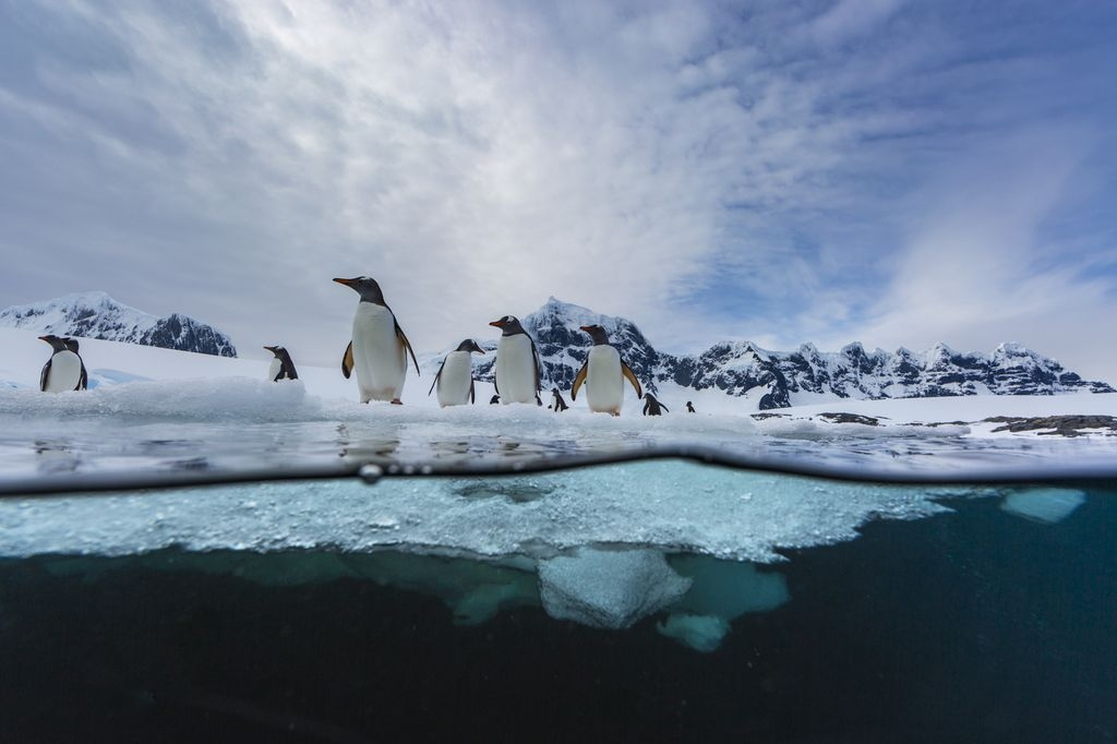 Photograph by Jonas Beyer, National Geographic Your Shot