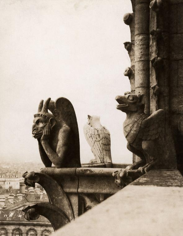 名為「思提吉」(Le Stryge)──也就是「吸血鬼」──的滴水嘴獸,就安坐在聖母院的北塔上面。這座滴水嘴獸是在1800中葉翻修聖母院時加上去的。 PHOTOGRAPH BY EMIL P. ALBRECHT, NAT GEO IMAGE COLLECTION