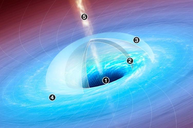 超大質量黑洞的質量可能達到太陽的數十億倍,而它們的起源至今仍是未解之謎。JASON TREAT AND ALEXANDER STEGMAIER, NGM STAFF. ART BY MARK A. GARLICK SOURCES: AVERY BRODERICK, PERIMETER INSTITUTE FOR THEORETICAL PHYSICS, UNIVERSITY OF WATERLOO, CANADA; UCLA GALACTIC CENTER GROUP