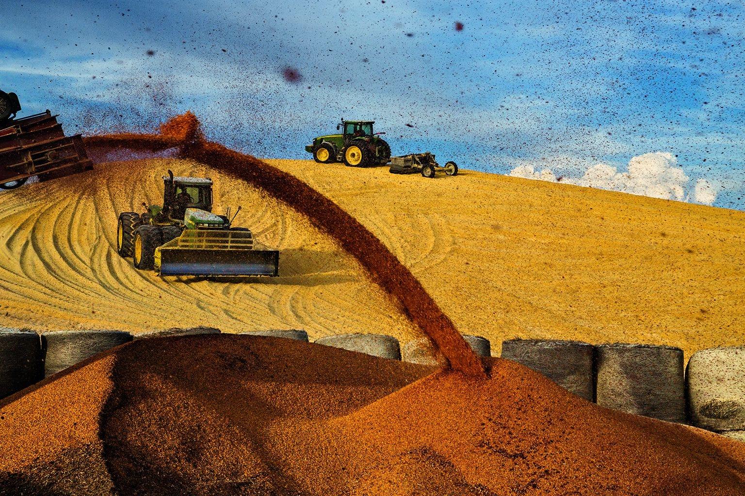 內布拉斯加州因匹里奧市的飼育場裡,拖拉機趕在風暴雲來臨前將玉米集中成一堆。玉米是一種需水量大的灌溉作物,該地區種植的玉米大多用於養肥畜牛。這個玉米堆最後會累積到90公尺長,重約13萬公噸,足以餵養5萬頭畜牛一整年。攝影:藍迪.奧森 Randy Olson