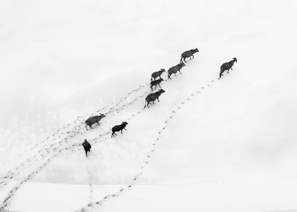 Photograph by Trung Pham, National Geographic Your Shot