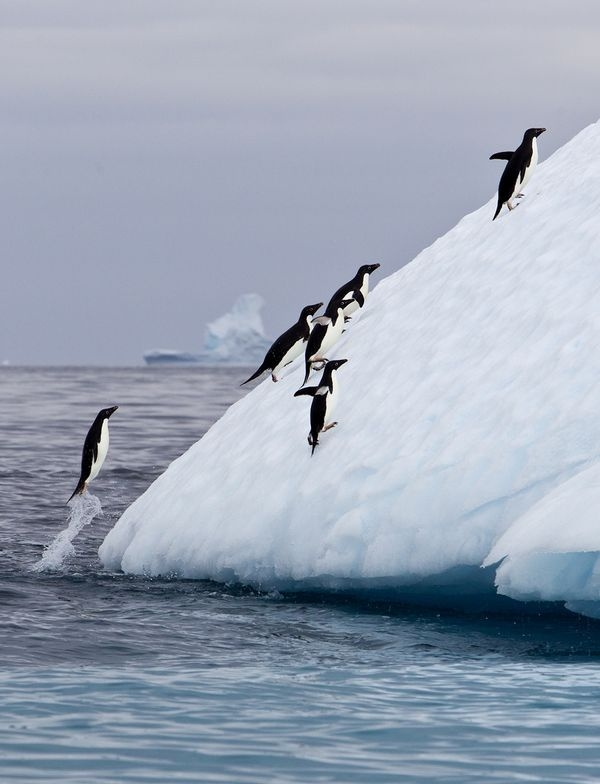 Photograph by  Irene Waring, National Geographic Your Shot