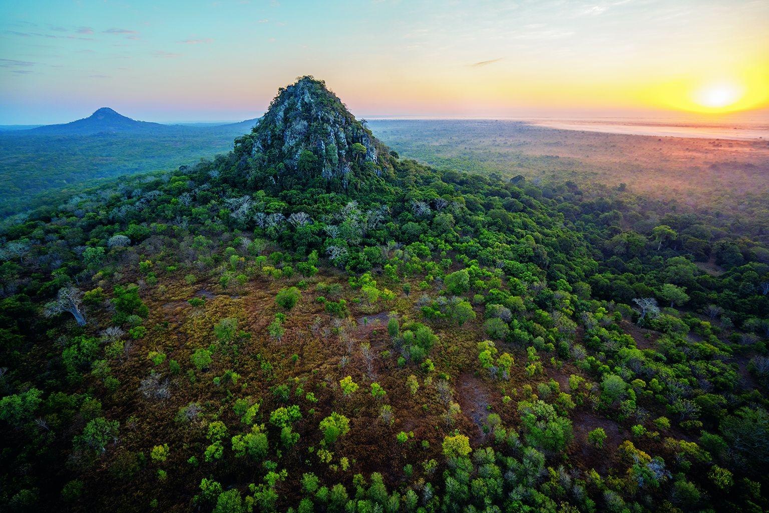 哥隆戈薩國家公園位於東非大裂谷的南端,占地4000平方公里,橫跨高山、高原森林、懸崖峽谷、棕櫚草原與溼地。從這一片森林零星突出的是邦加島山,這是周圍較軟的地形遭受侵蝕後遺留下來的古老火山岩小丘。攝影:查理.漢米爾頓.詹姆士 CHARLIE HAMILTON JAMES