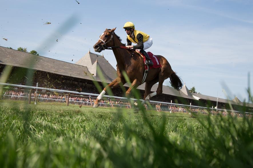 在紐約沙拉托加斯普陵(Saratoga Springs)的特拉弗斯錦標賽(Travers Stakes)上,遙控相機捕捉到一批純種公馬疾馳而過。PHOTOGRAPH BY MATT MOYER, NAT GEO IMAGE COLLECTION