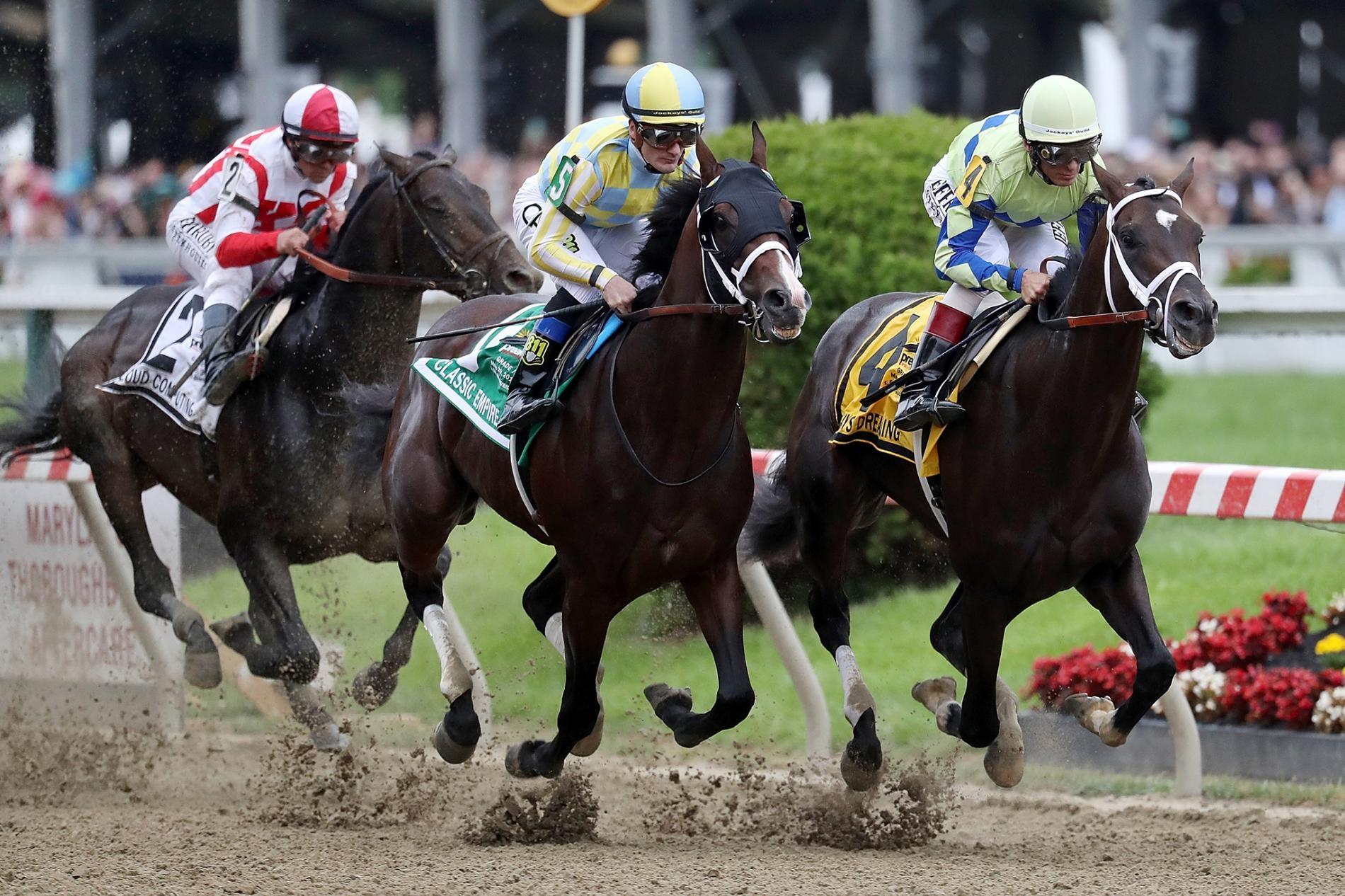 賽馬──像在照片裡看到的這些馬兒,正在馬里蘭州巴爾的摩(Baltimore, Maryland)2017年的普里克尼斯賽馬(Preakness Stakes)中進行比賽。牠們常常因四肢受傷而死亡。PHOTOGRAPH BY ROB CARR, GETTY