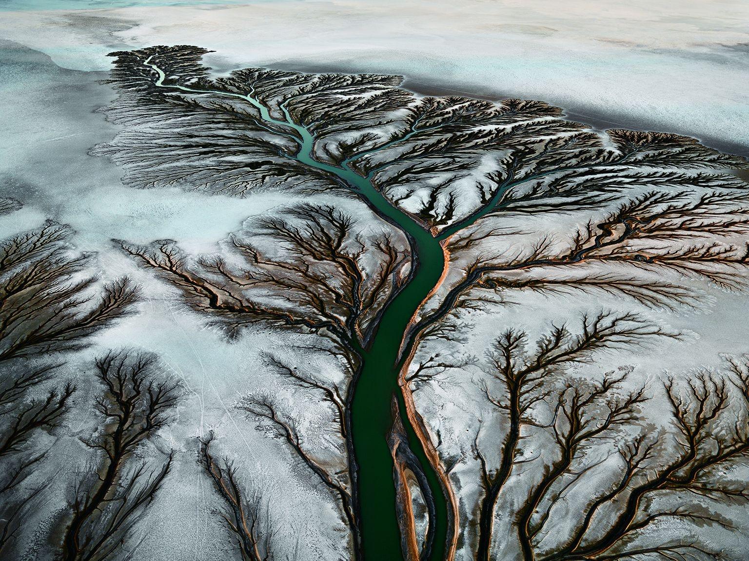 墨西哥。從300公尺的空中看下去,乾旱的科羅拉多河三角洲宛如一棵有著綠色樹幹的樹,枝椏卻是棕色的。過去一個世紀以來,水壩與分水導致淡水逐漸減少,使得野生動物、溼地、農業及漁業也愈來愈少了。PHOTO: EDWARD BURTYNSKY, NICHOLAS METIVIER GALLERY, TORONTO