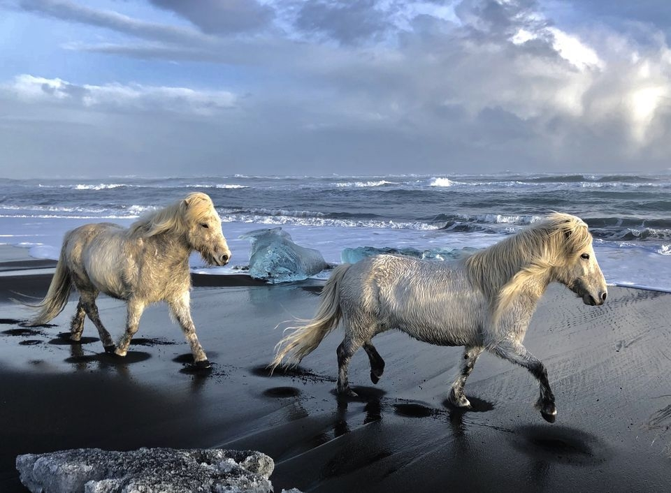 Photograph by Reed S., National Geographic Your Shot