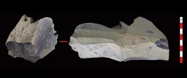 西藏尼阿底遺址中石製品的細節圖。圖片來源:參考文獻[4]