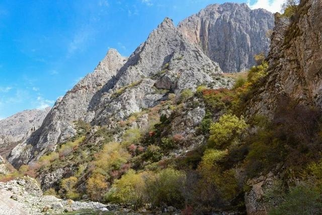 白石崖溶洞所在河谷的秋景。圖片來源:張東菊|蘭州大學