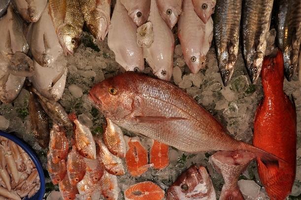 什麼?鱈魚不是鱈魚?多利魚也不是多利魚?破解海鮮的迷思