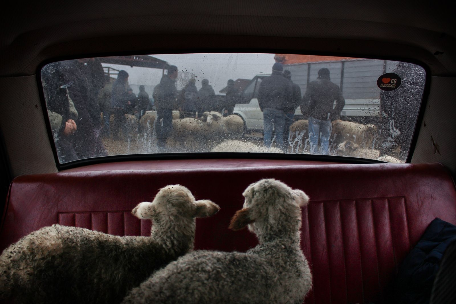 Photograph by Khatia Nikabadze, National Geographic Your Shot