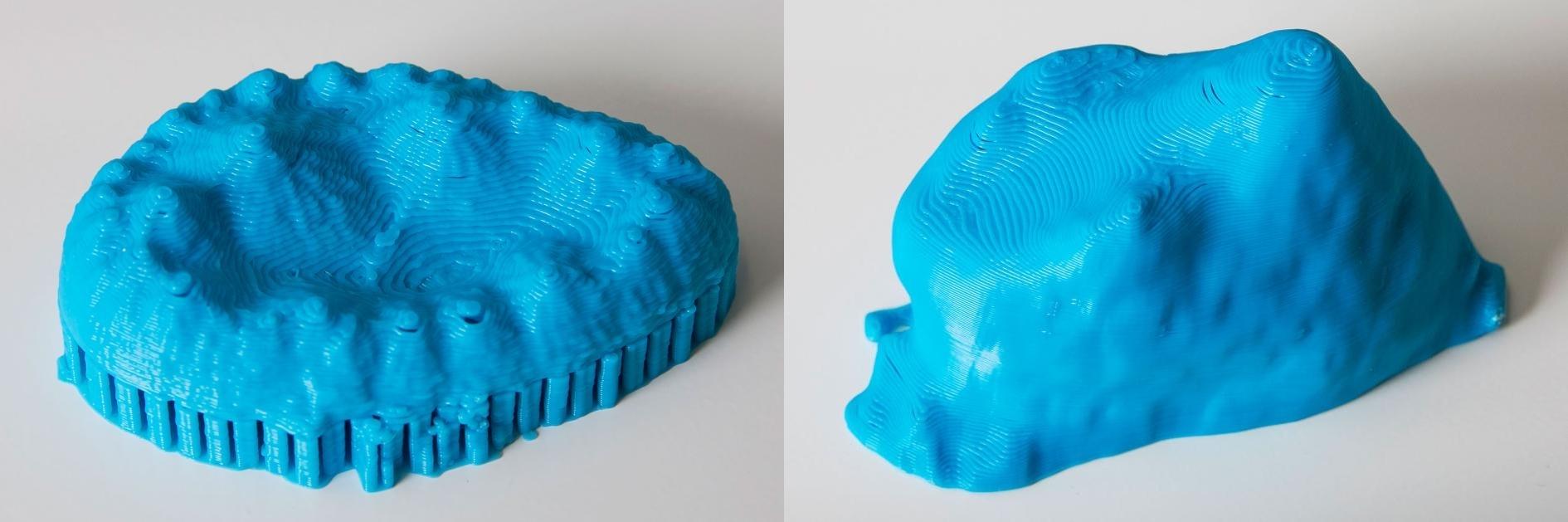 這對3D列印模型展示出兩種已滅絕鱷魚表親的牙齒複雜形狀。這些形狀顯示這些久遠以前的鱷魚吃素。 PHOTOGRAPH BY MARK JOHNSTON, NHMU