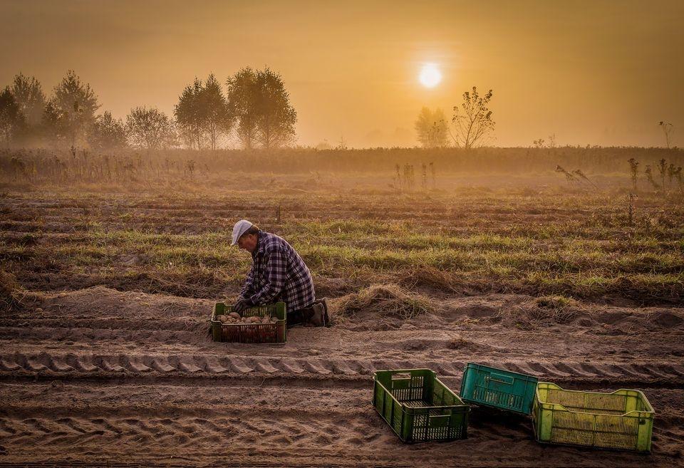 Photograph by Malgorzata Walkowska, National Geographic Your Shot